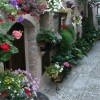 Spello, Italy. Umbria Walking Tour.